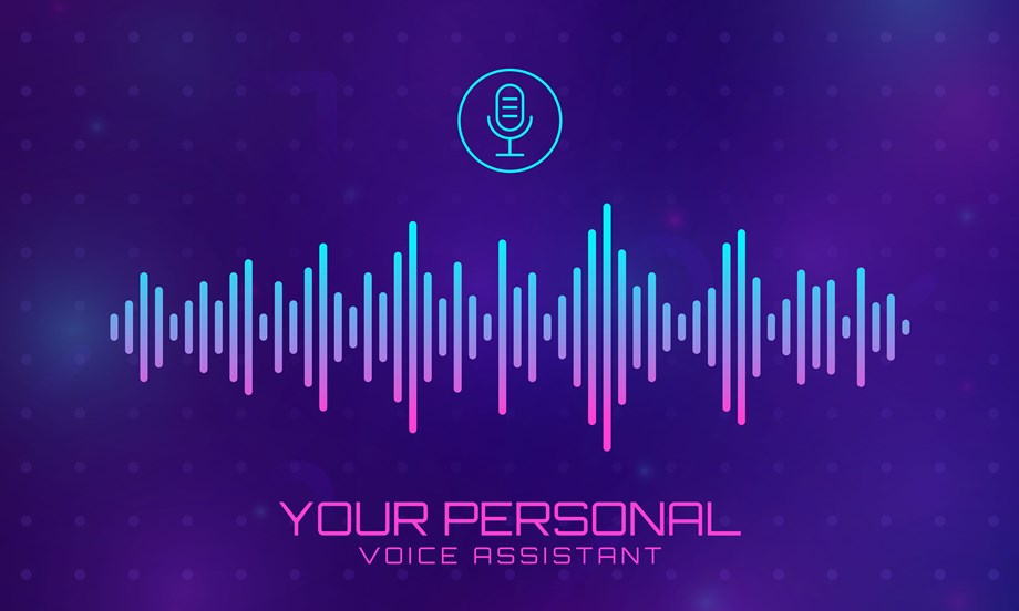 Voice, Assistant, Security, Risk